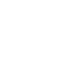 Black North American Solidarity