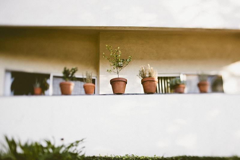 LA a la Liz_Beachwood Canyon_004.jpg