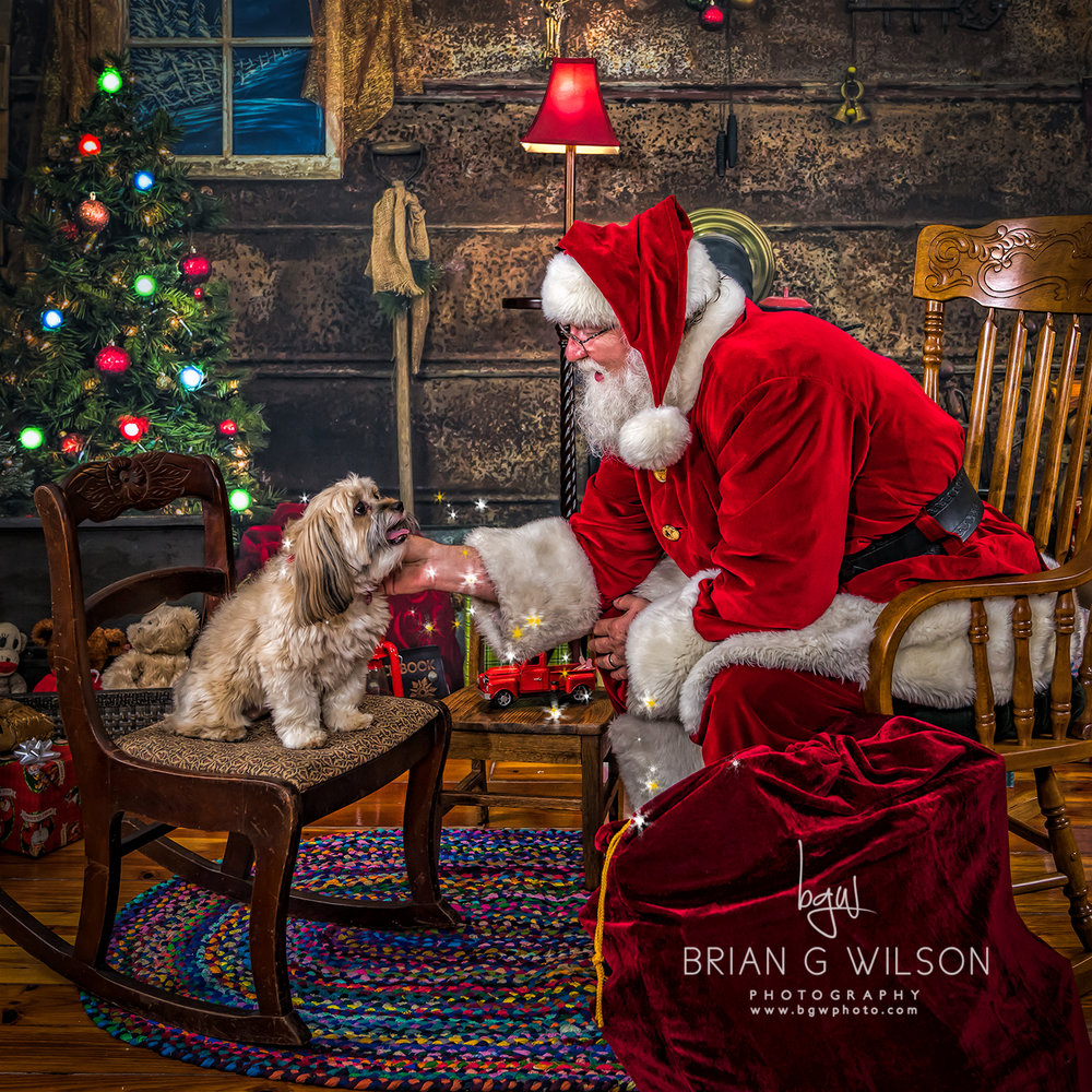 Well behaved pets are welcome to visit with Santa anytime!