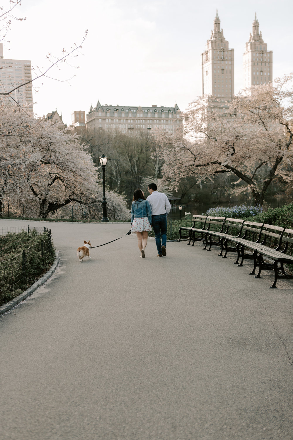 Central Park Spring Engagement Photos