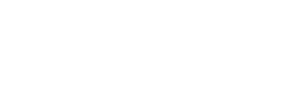 Desiree Leilani Photography Logo