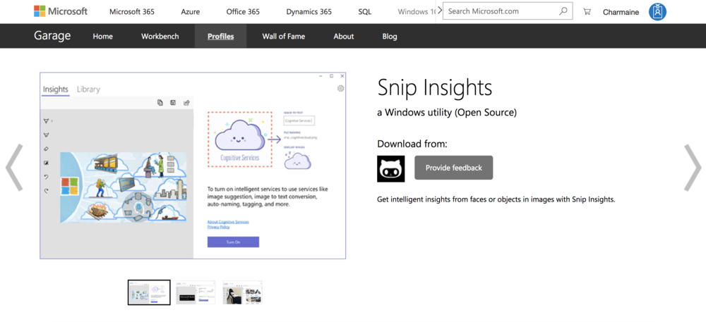 Screenshot of Snip Insights on Microsoft Website