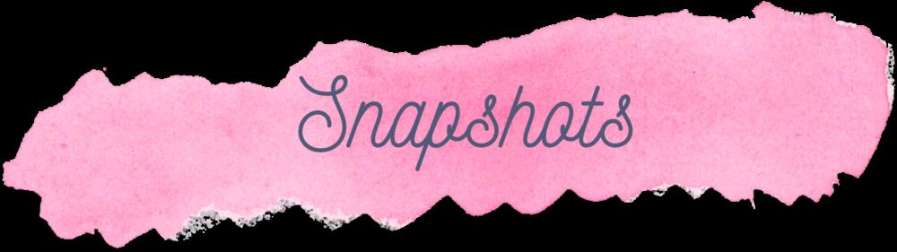 snapshots.png