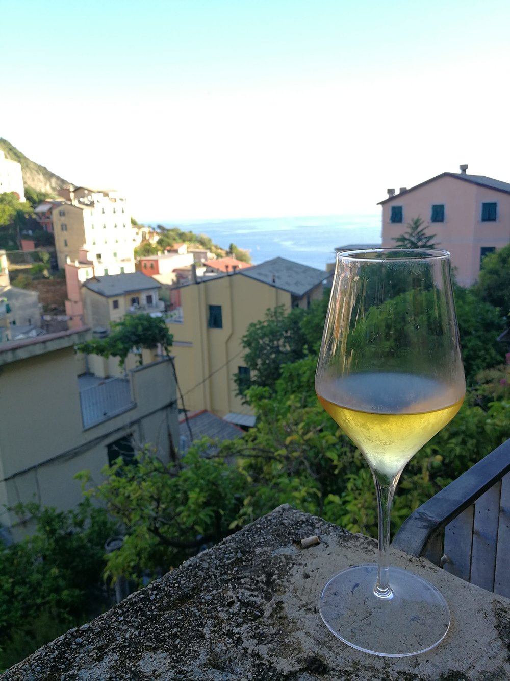 Wine with view Riomaggore
