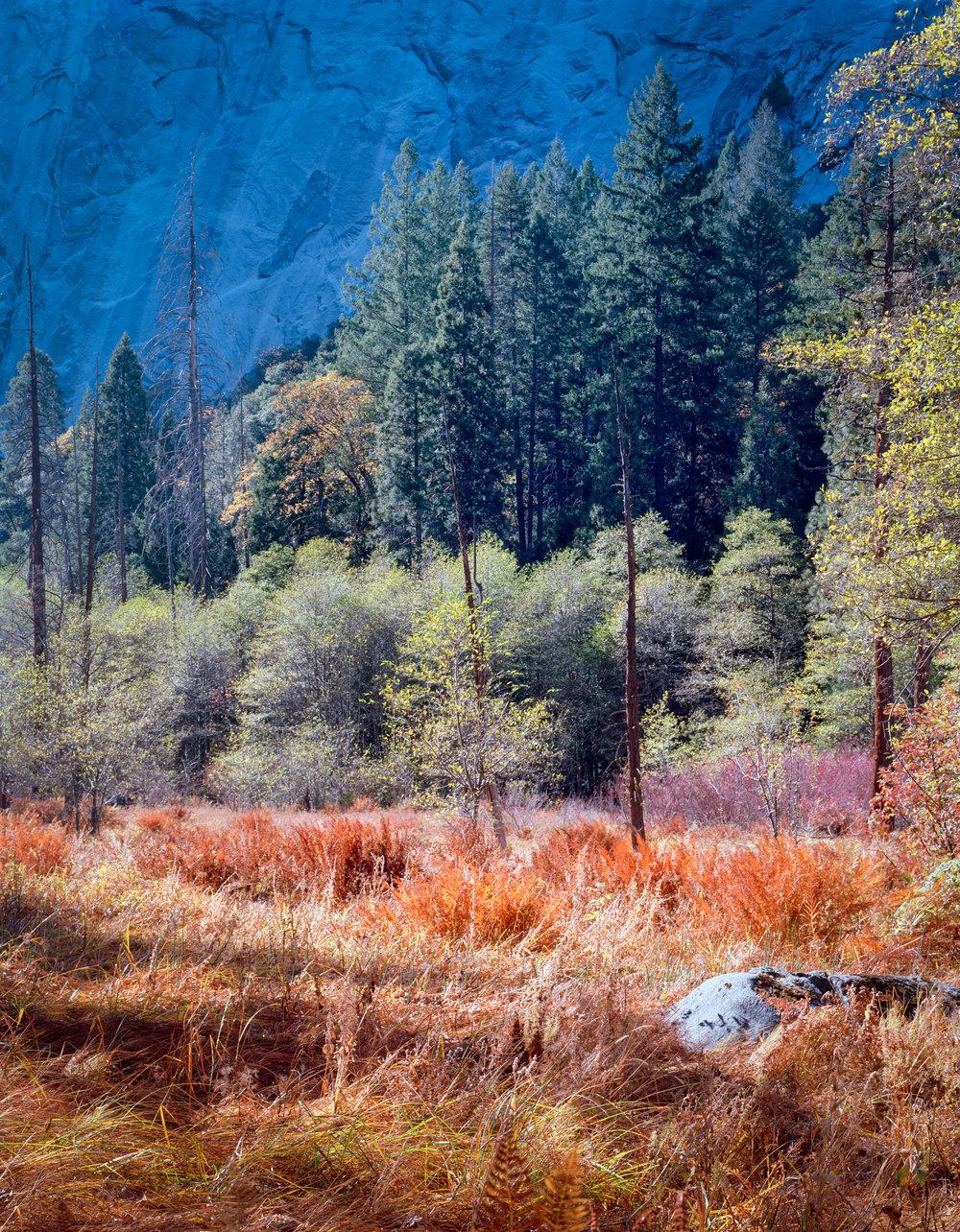 Yosemite cl-0001.jpg