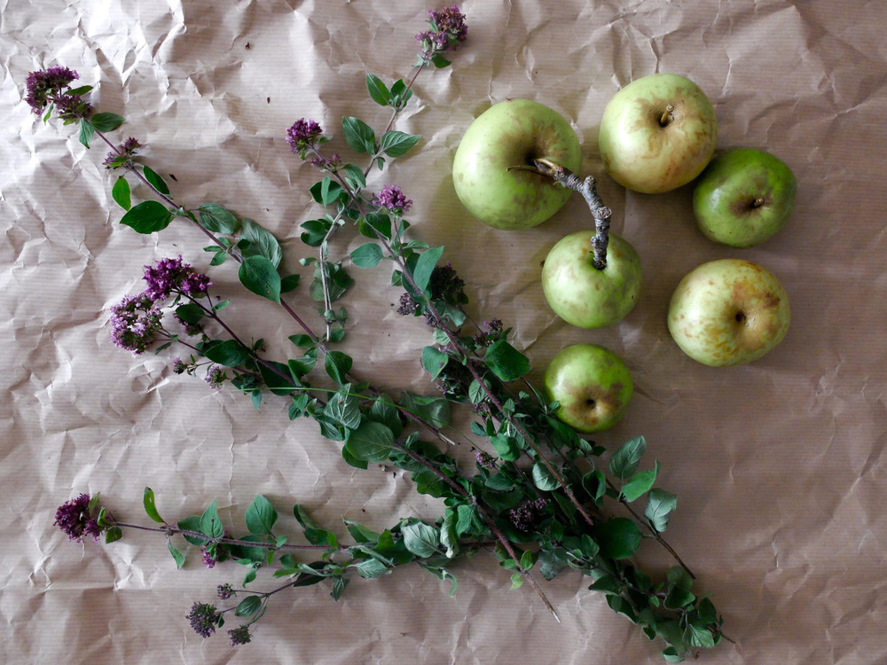 Wild Marjoram and Crab Apples picked this morning. Now in the pot  and on their way to becoming a jelly or a fruit cheese. Time will tell.
