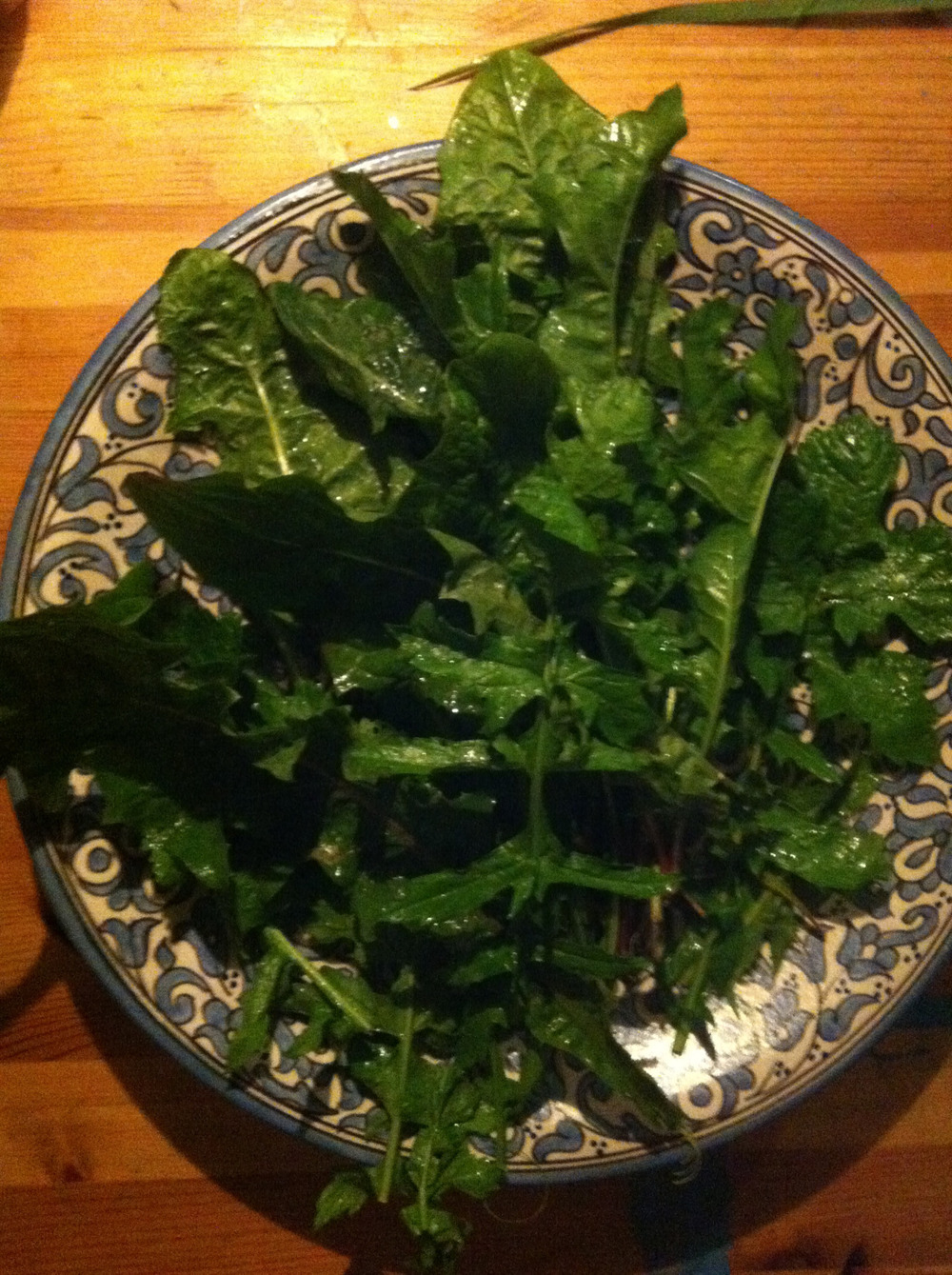 Dandelion leaves waiting to be transformed into a wild green juice. I will sweeten with a couple of apples and maybe add a little ginger.
