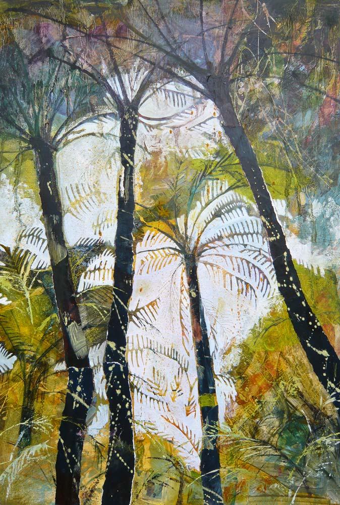New Zealand Tree Ferns