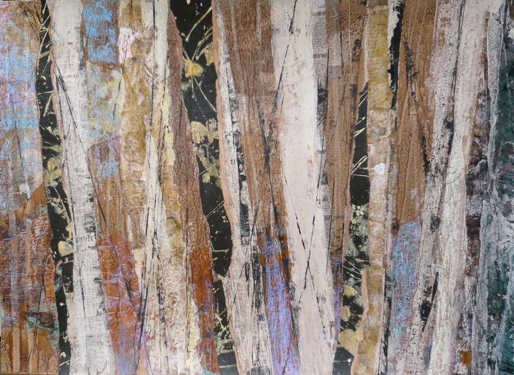 New Zealand birch wood abstract