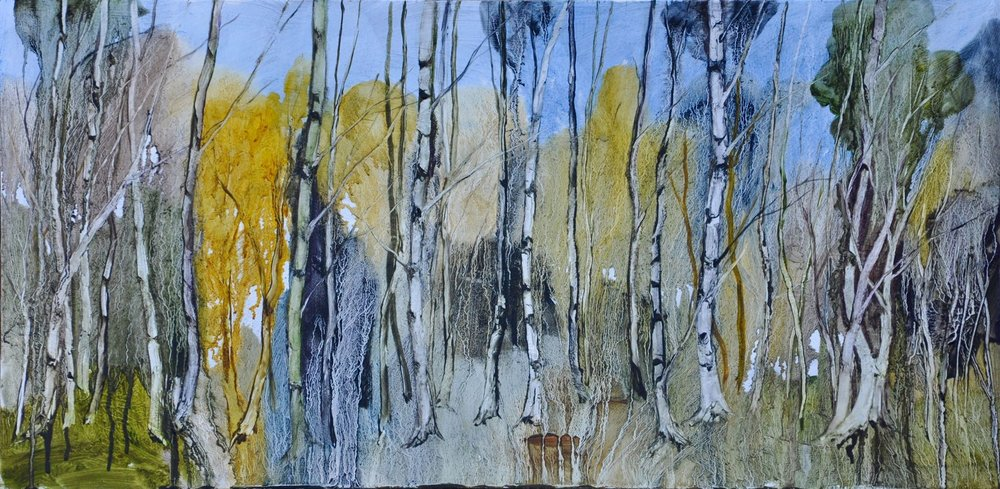 Siver birch magic