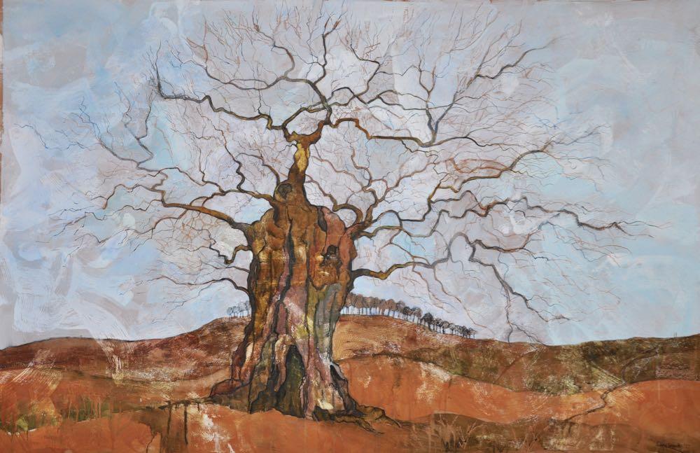 Ancient oak, Bradgate
