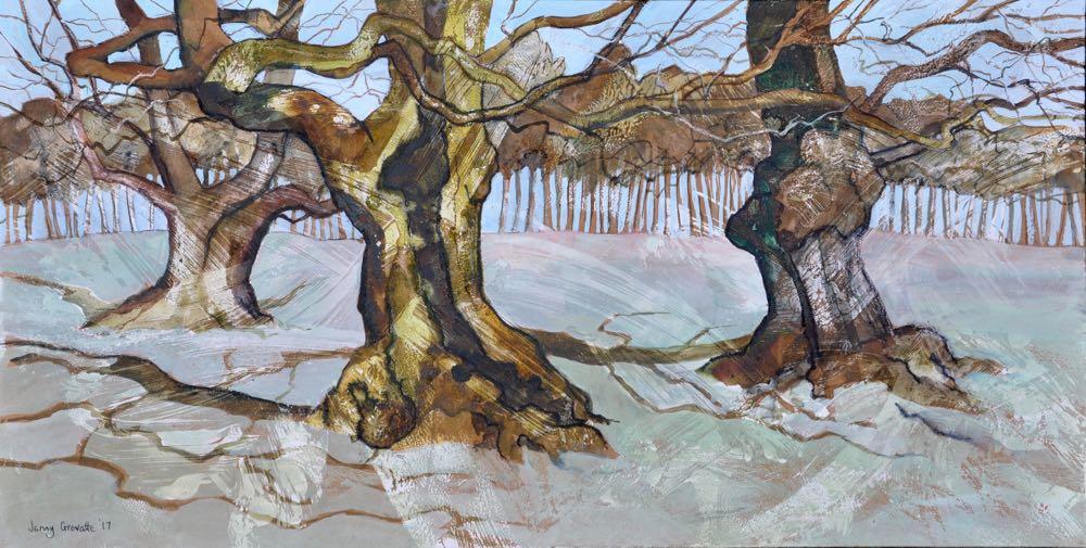 Trio of ancient oaks, Bradgate