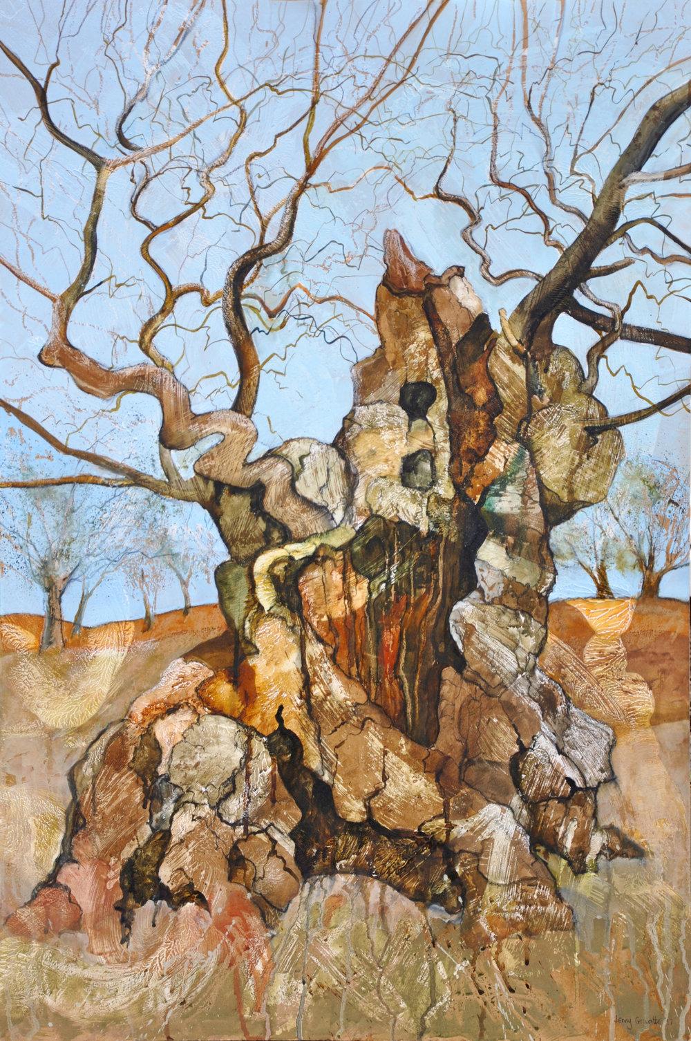 Portrait of a hollow oak, Bradgate