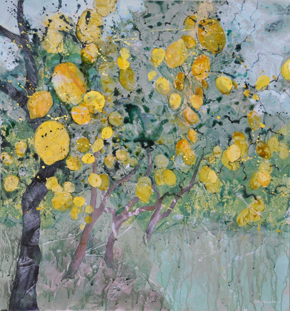 In the lemon groves, Ravello