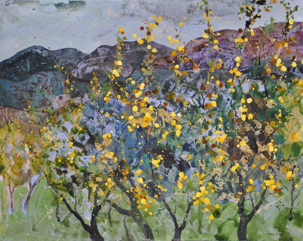 Amalfi lemon groves