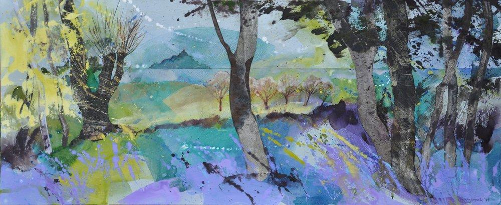 Cornisn coast bluebells