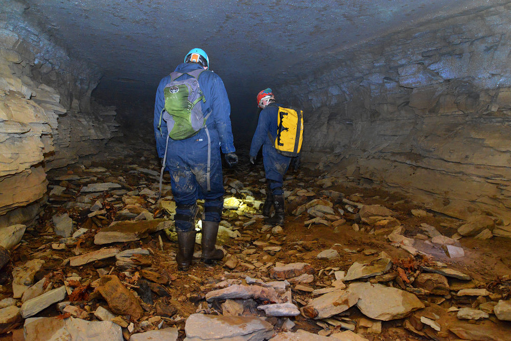 Matt Safford, left, and Aron Katz  explore Fogelpole Cave in search of insect specimens on Saturday, March 10, 2018. The pair are doctoral students studying subsets of biology at the University of Illinois.