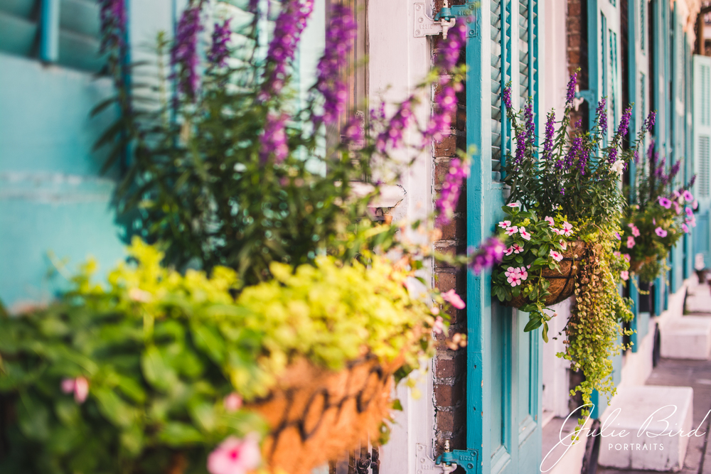 The architecture of the French Quarter is full of bright and vibrant colors.