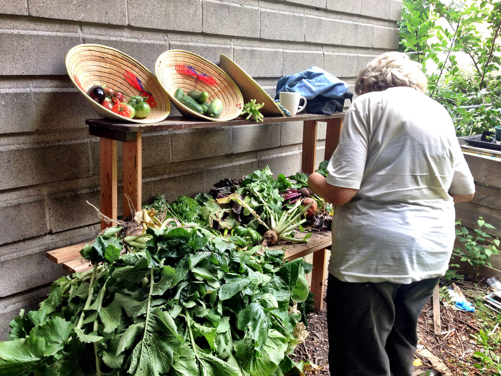 Bonnie sorts vegetables and herbs.