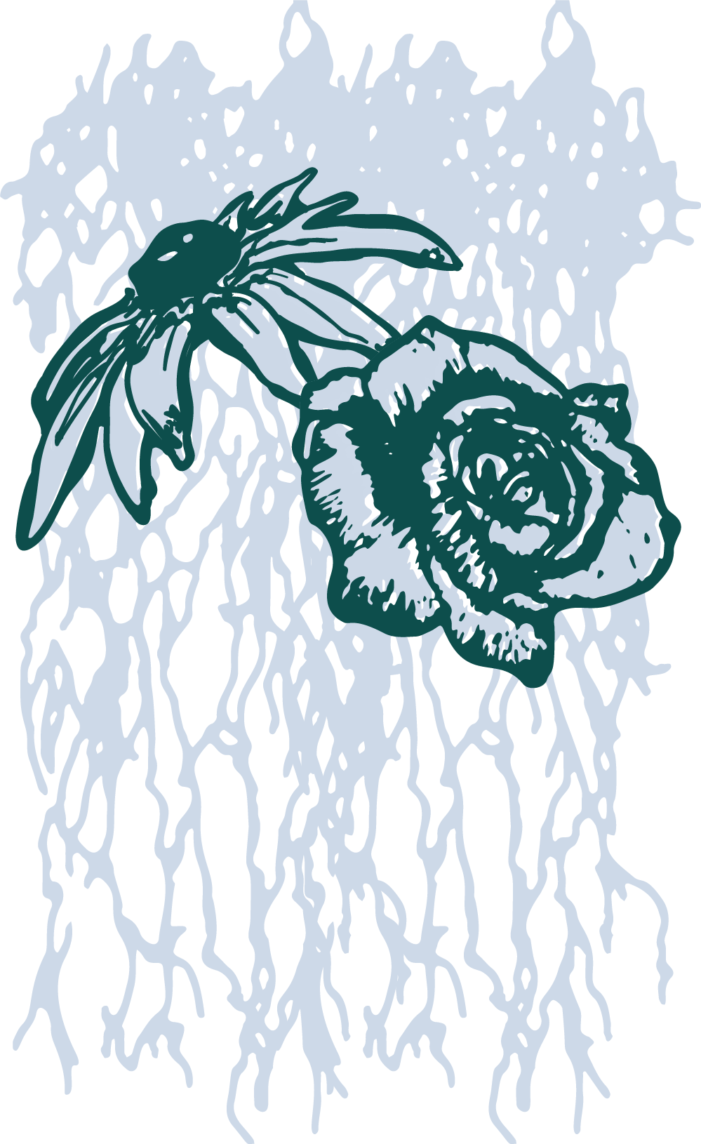 Flowers-roots.png