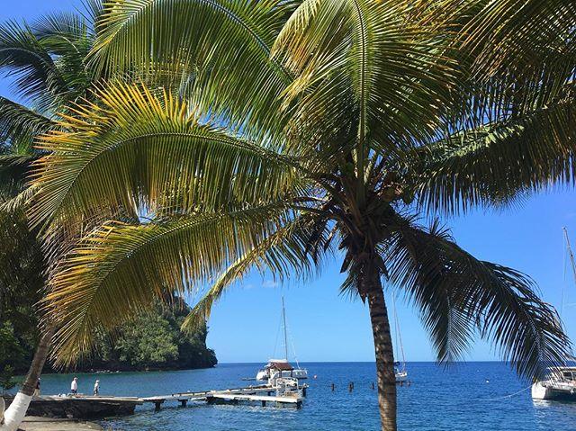 I filmen Pirates of the Caribbean heter denne havna Port Royal🏰 Vår «Black Pearl» ligger bak brygga der🗺⚓️ #kapteinrakeoghanscrew #krsfhs
