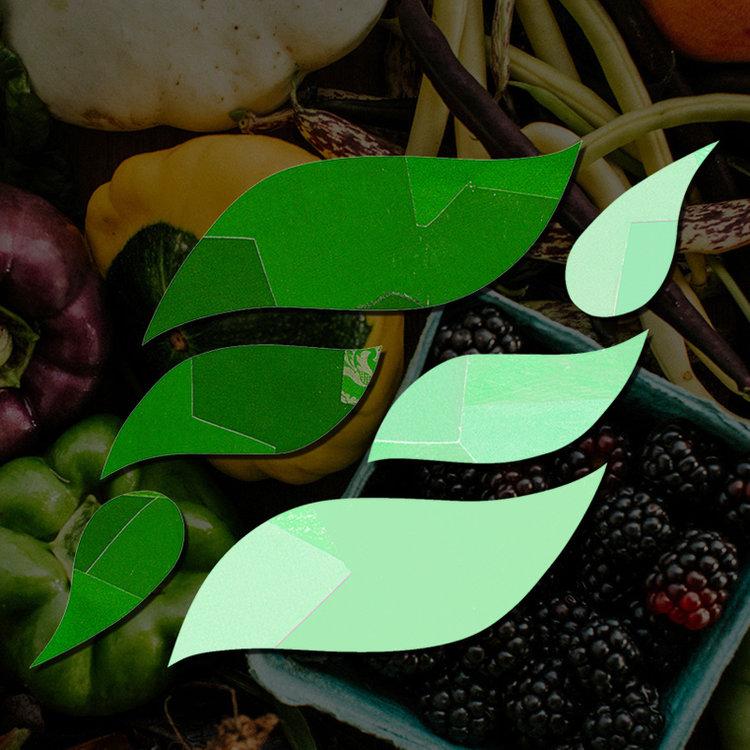 FARMFARE_FEATURED+IMAGE1.jpg