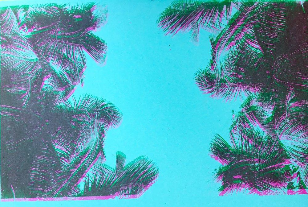 COSMIS PALMS (3D)