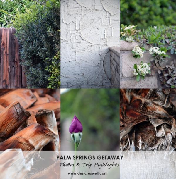 Palm Spring Travel Uptown Design District