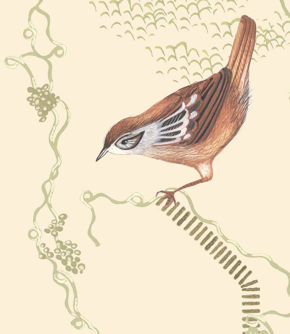 sparrowbig.jpg