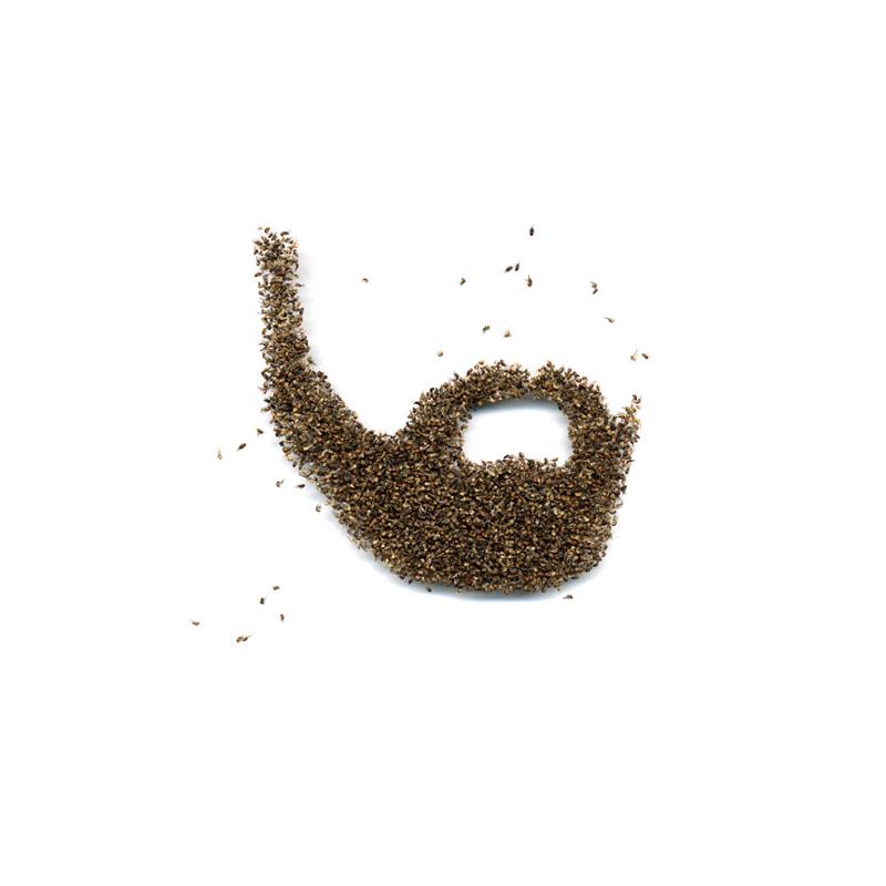 15-boxed-beard.jpg