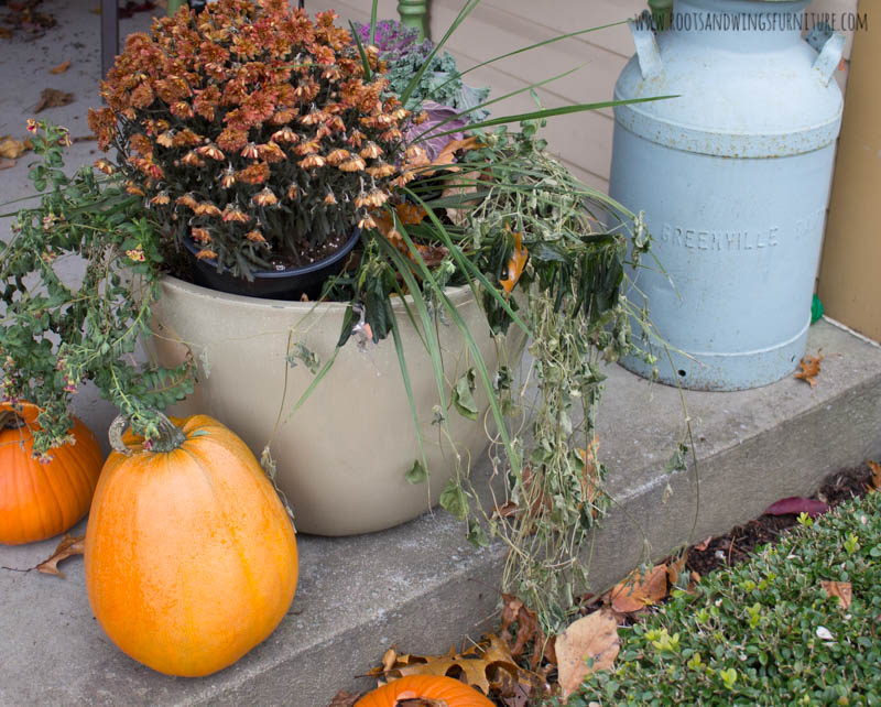 spray painted fall plants-1.jpg