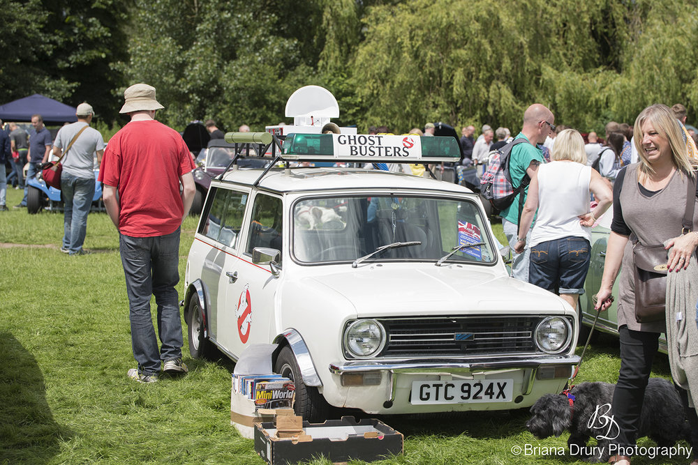 Cars_in_the_Park1152