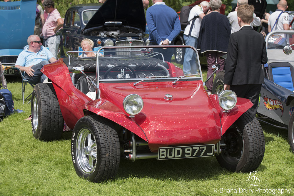 Cars_in_the_Park1156
