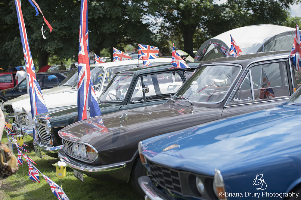 Cars_in_the_Park1271