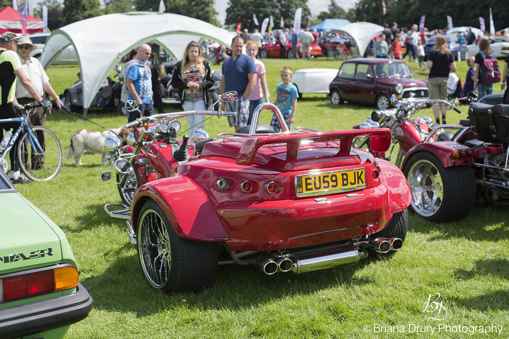 Cars_in_the_Park1349