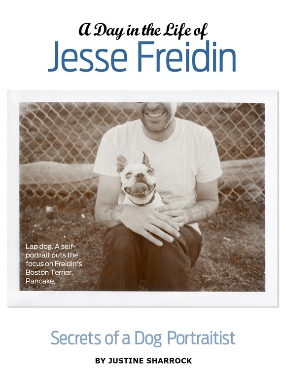 Good Dog Magazine features Jesse Freidin, Fine Art Dog Photographer
