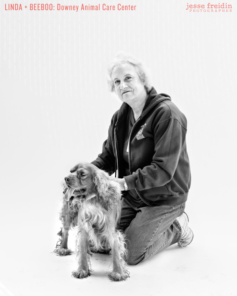 Finding Shelter: Animal Rescue Volunteer Portraits