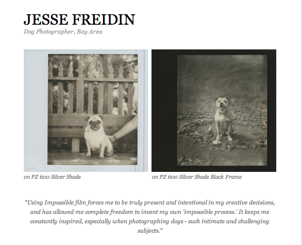 Jesse Freidin Photographer for Impossible Project