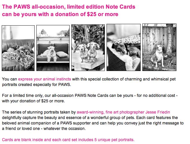 PAWS Note Cards Jesse Freidin