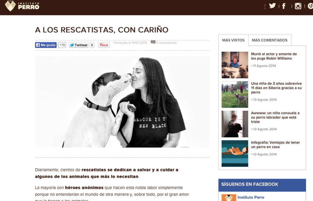 Finding Shelter: Insituto Perro