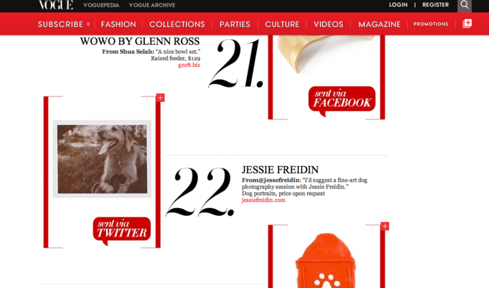 Pet Photographer Vogue Gift Guide