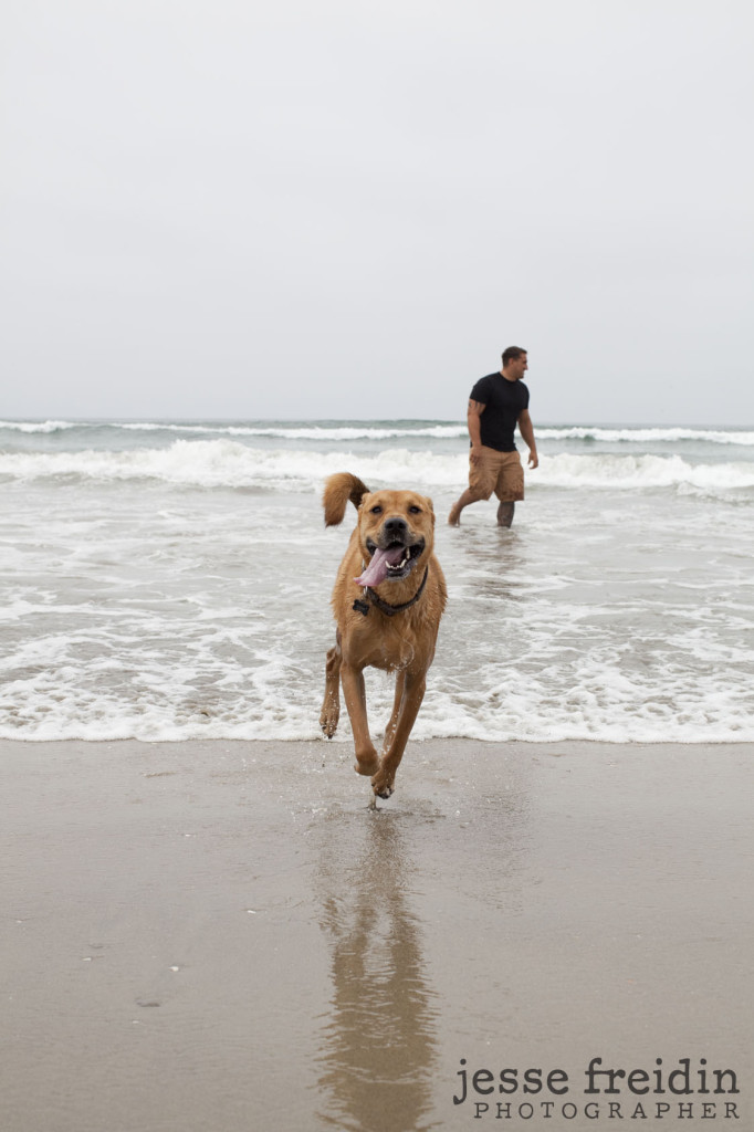 Huntington Dog Beach Photography LA