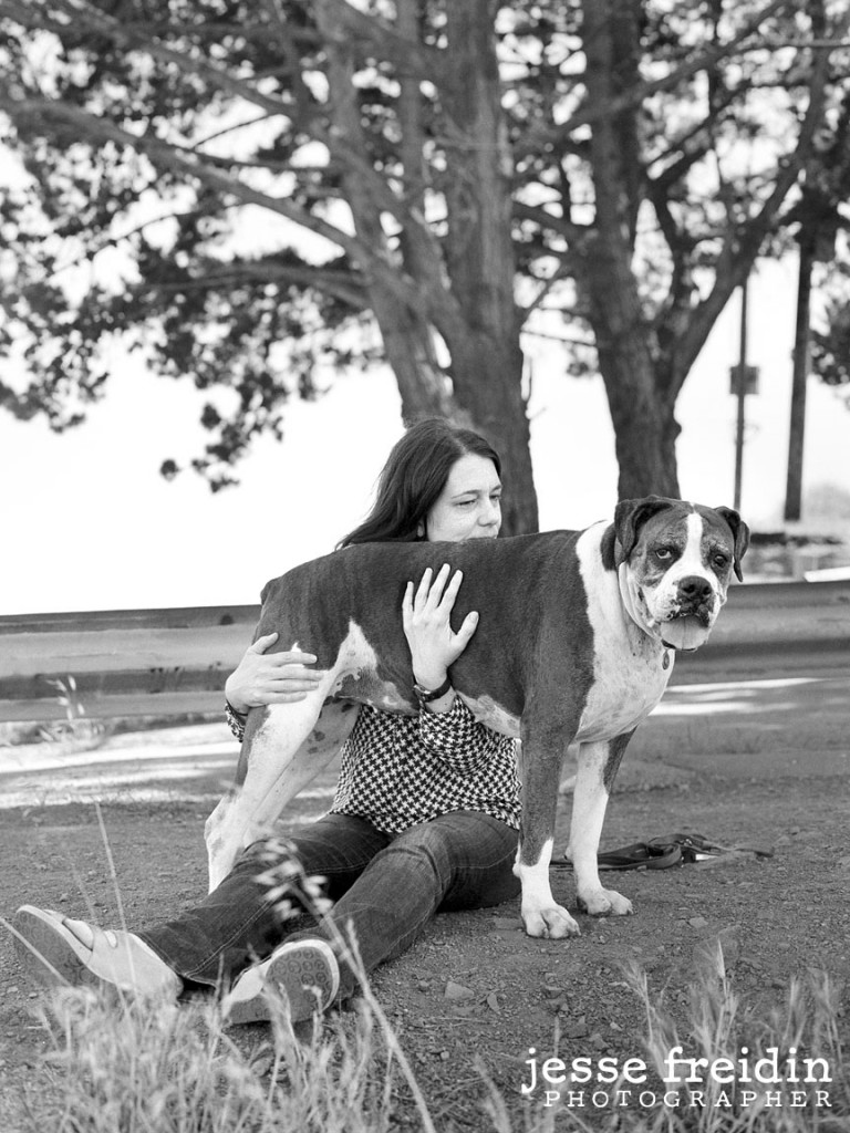 dog photographer san francisco boxer