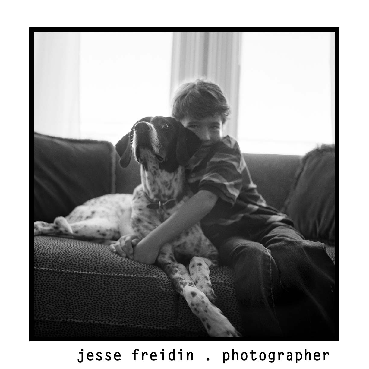 family dog photographer