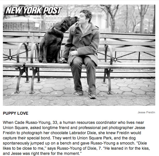 New York Pet Photography