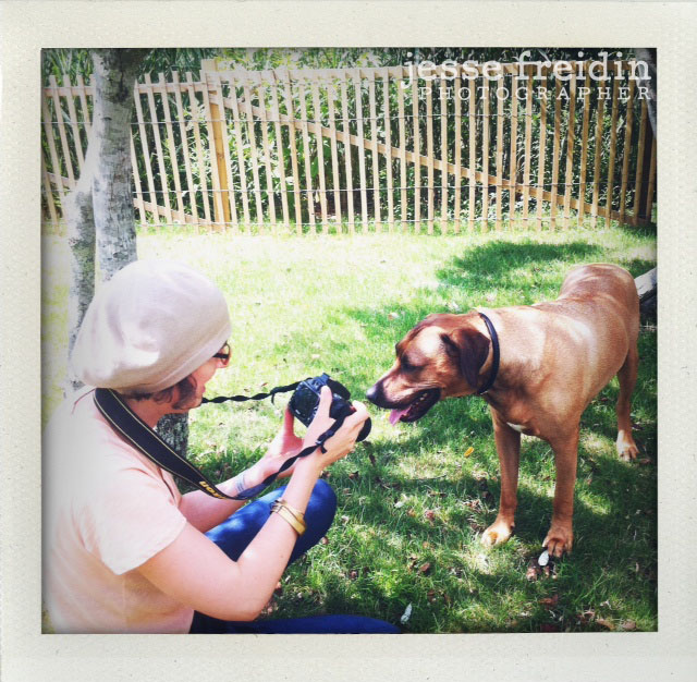 Pet Photography Class with Jesse Freidin