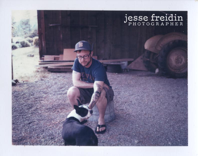 boston terrier polaroid