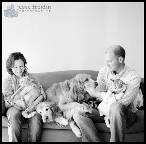 pet photography san francisco