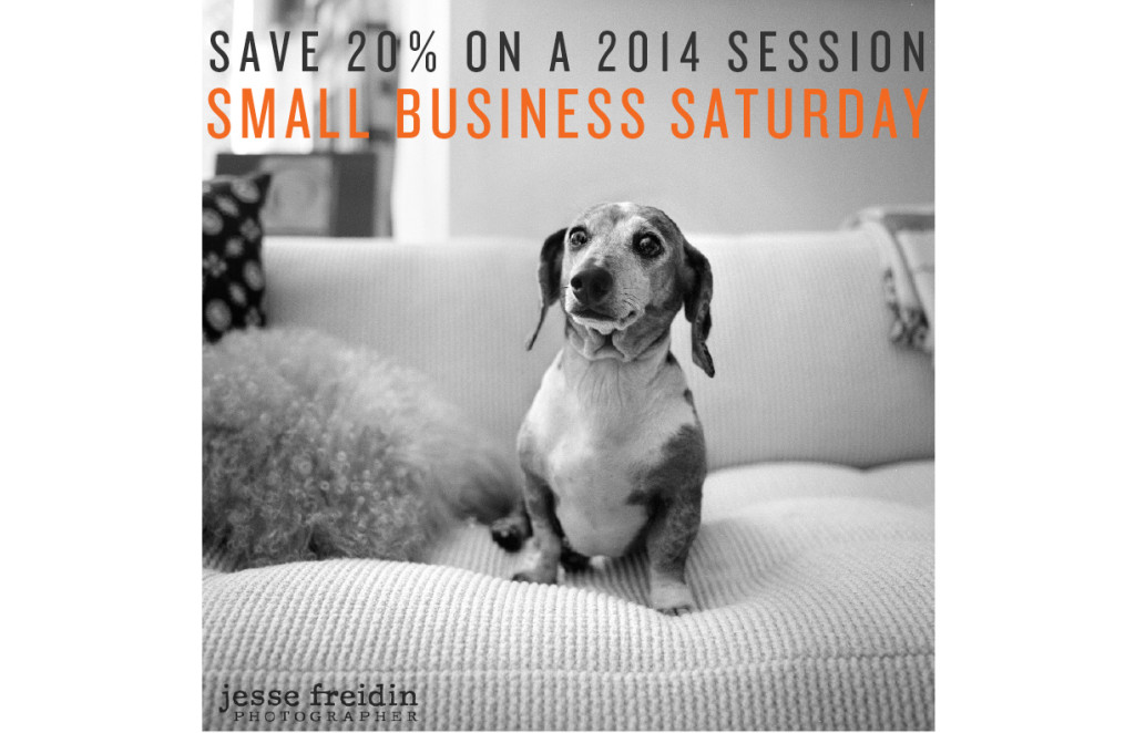 Small Business Saturday 20% SAVINGS