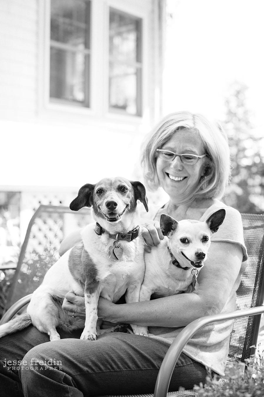 Boston Dog Photography